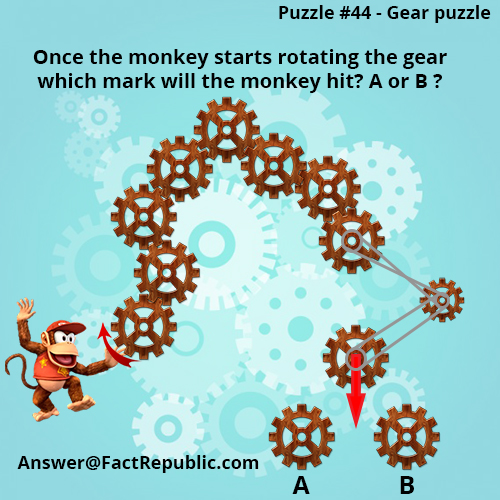Puzzle 44 - Gear Puzzle Answer. Once the Monkey starts rotating the gear which mark will the monkey hit? A or B?